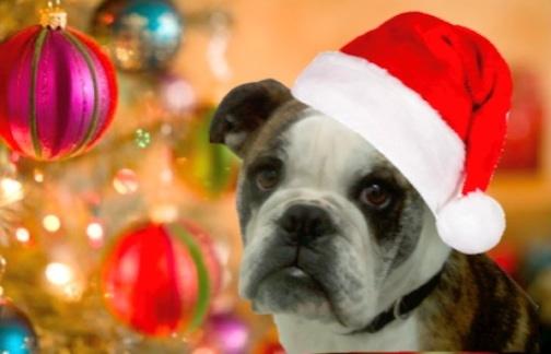 make santa hat 1a